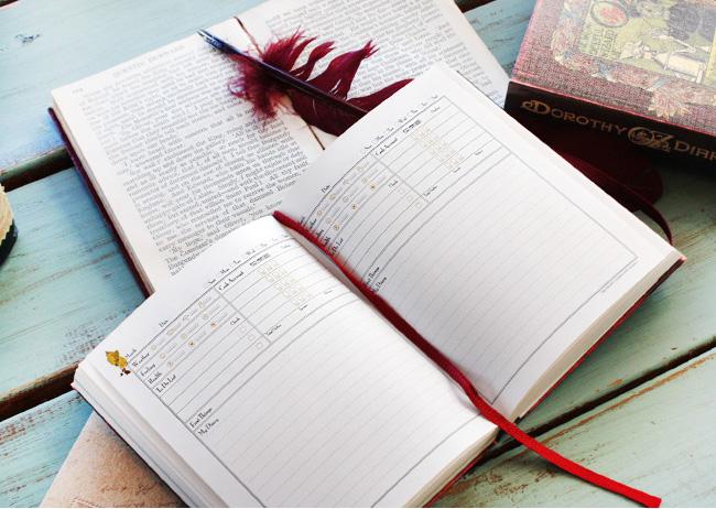 dorothy diary 02