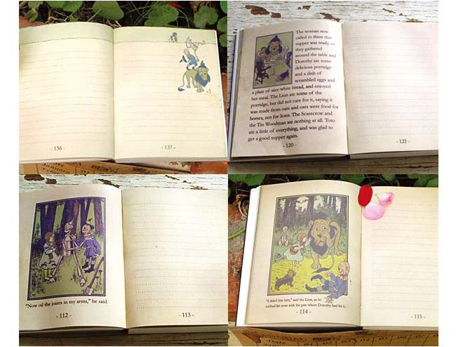 dorothy diary 08